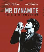 Album artwork for Mr Dynamite  - The Rise of James Brown