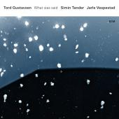 Album artwork for What Was Said / Tord Gustavsen