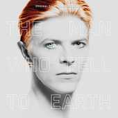 Album artwork for MAN WHO FELL TO EARTH  (VINYL)