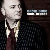 Album artwork for David Gogo: Soul-Bender