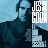 Album artwork for Jesse Cook: The Blue Guitar Sessions