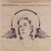 Album artwork for DAVID SYLVIAN - DIED IN THE WOOL