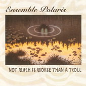Album artwork for NOT MUCH IS WORSE THAN A TROLL