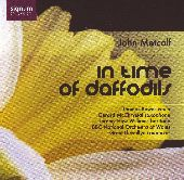 Album artwork for METCALF: IN TIME OF DAFFODILS