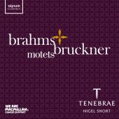 Album artwork for Brahms & Bruckner MOTETS / Tenebrae