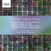 Album artwork for Reger: Fantasies & Fugues / Goode