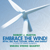 Album artwork for Martin: Embrace the Wind!
