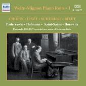 Album artwork for WELTE-MIGNON PIANO ROLLS: VOL. 1