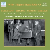 Album artwork for Welte-Mignon Piano Rolls Vol 3 - R. Strauss, Grieg