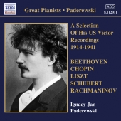 Album artwork for Ignacy Jan Paderewski: US Victor Recordings