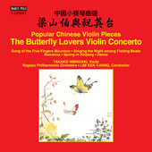 Album artwork for Popular Chinese Violin Pieces