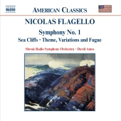 Album artwork for Flagello: Symphony no 1, etc / Amos