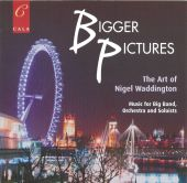 Album artwork for Bigger Pictures - The Art of Nigel Waddingtion