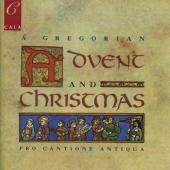 Album artwork for Gregorian Advent and Christmas