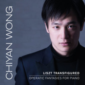 Album artwork for LISZT TRANSFIGURED / Chiyan Wong