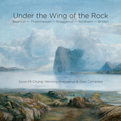Album artwork for UNDER THE WING OF THE ROCK