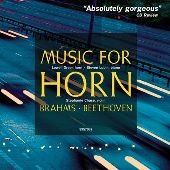 Album artwork for MUSIC FOR HORN