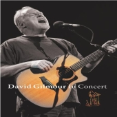 Album artwork for DAVID GILMOUR IN CONCERT