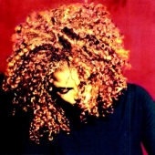 Album artwork for VELVET ROPE