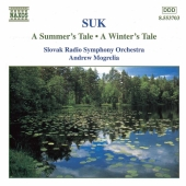Album artwork for A SUMMER'S TALE