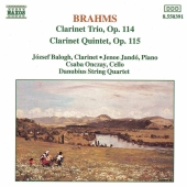 Album artwork for Brahms: Clarinet Trio & Quintet / Bologh, Danubius