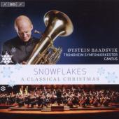 Album artwork for Snowflakes - A Classical Christmas