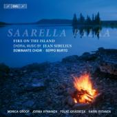 Album artwork for Sibelius: Saarella palaa / Fire on the Island