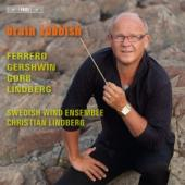 Album artwork for Swedish Wind Ensemble: Brain Rubbish
