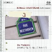 Album artwork for DIE VERLIEBTE: COMPLETE WORKS FOR SOLO PIANO, VOL.