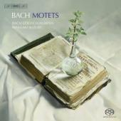 Album artwork for Bach: Motets / Suzuki, Bach Collegium Japan