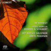 Album artwork for Im Herbst - choral works by Brahms and Schubert