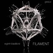 Album artwork for FILAMENT / Eighth Blackbird