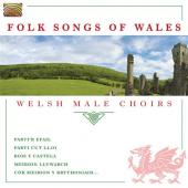 Album artwork for Folk Songs of Wales