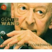 Album artwork for GUNTER WAND - THE ESSENTIAL RECORDINGS