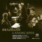 Album artwork for Brazilian Landscapes
