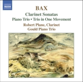 Album artwork for CLARINET SONATAS / PIANO TRIO / TRIO IN ONE MOVEME