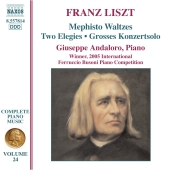 Album artwork for LISZT PIANO MUSIC VOLUME 24