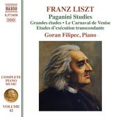Album artwork for Liszt: Paganini Studies