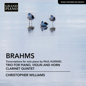 Album artwork for Brahms: Transcriptions for Piano