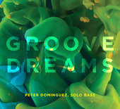 Album artwork for Groove Dreams / Peter Dominguez