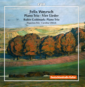 Album artwork for Woyrsch: Piano Trio in E Minor & 4 Lieder - Goldma