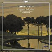 Album artwork for Walter: Symphony in D Minor / Botstein