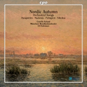 Album artwork for NORDIC AUTUMN- ORCHESTRAL SONGS