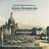Album artwork for DRESDNER BAROCKORCHESTER