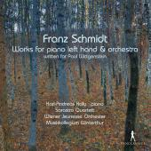 Album artwork for Schmidt: Works for Piano Left Hand & Orchestra