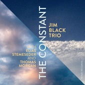 Album artwork for Jim Black Trio - The Constant