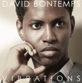 Album artwork for Vibrations / David Bontemps