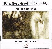 Album artwork for TWO PIANO TRIOS OP. 49 & OP. 66