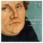 Album artwork for BACH - MISSAE BREVES