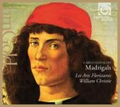 Album artwork for Gesualdo: Madrigals / William Christie